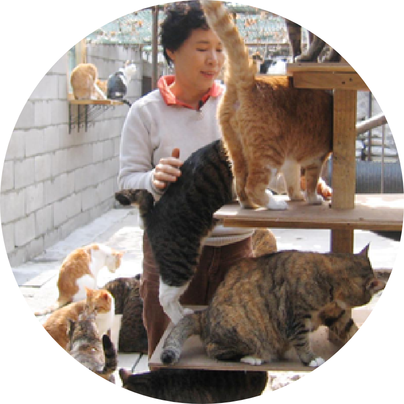 재단법인 한국동물보호협회 설립자 금선란